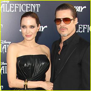 Angelina Jolie & Brad Pitt Were Married Before France Wedding