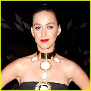 Katy Perry Leaks 'Super Bowl 2015' Song ft. Lenny Kravitz - Listen Now!