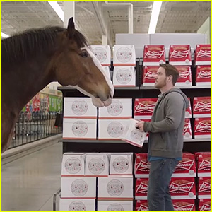Budweiser Super Bowl 2015 Commercial: Clydesdale Horse Makes a Beer Run - Watch Now!
