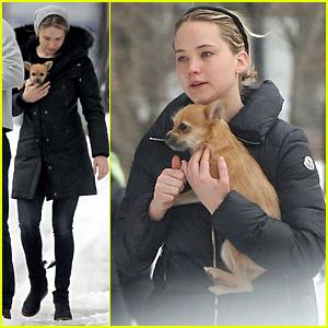 Jennifer Lawrence Skips Oscars 2015, Spends Time in Boston Instead