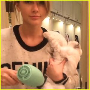 Taylor Swift Uses Harry Josh's Hair Dryer on Her Cat!