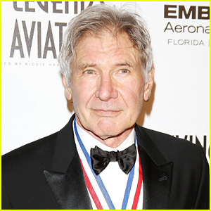 Harrison Ford Survives Scary Plane Crash in Venice