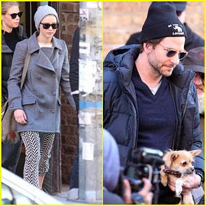 Jennifer Lawrence & Bradley Cooper Step Out After Denying Romance Rumors