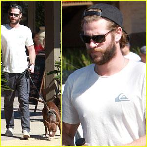 Liam Hemsworth Wears Wrist Brace After 'Independence Day 2' Movie News