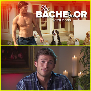 Scott Eastwood Goes Shirtless, Spoofs the 'Bachelor' in 'Bachelor for Dogs' Video - Watch Now!