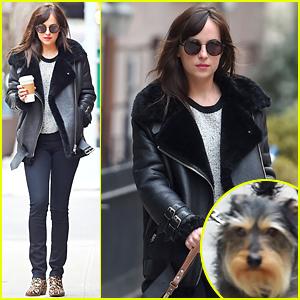 Dakota Johnson's 'Fifty Shades of Grey' Helps Universal Gross $1 Billion Internationally