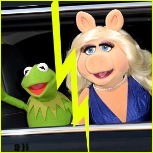 Kermit the Frog & Miss Piggy Split, Release Joint Statement