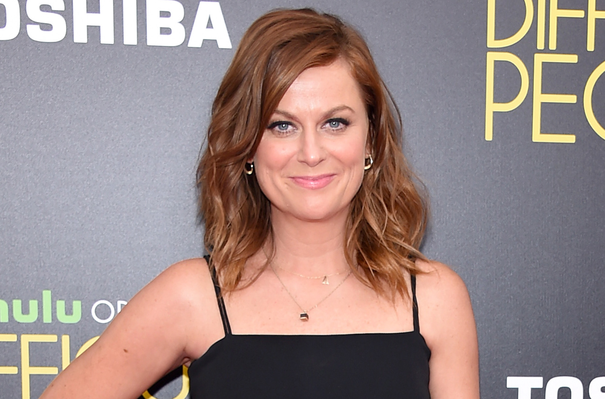 Amy Poehler Conducted Spontaneous Marriage Ceremony at a ...