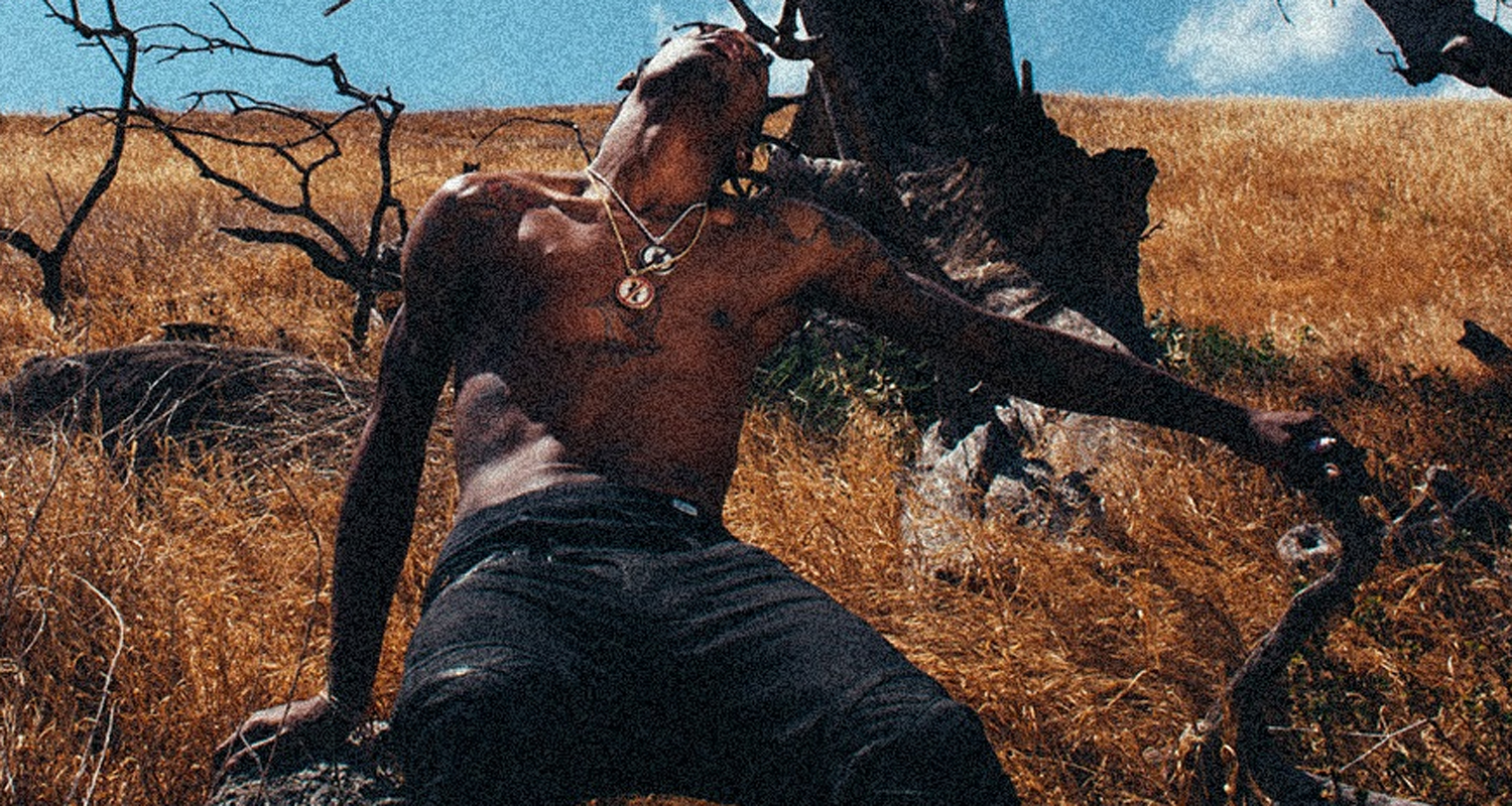 travis scott new album