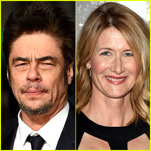 'Star Wars: Episode 8' Cast: Benicio Del Toro, Laura Dern & More Land Roles!