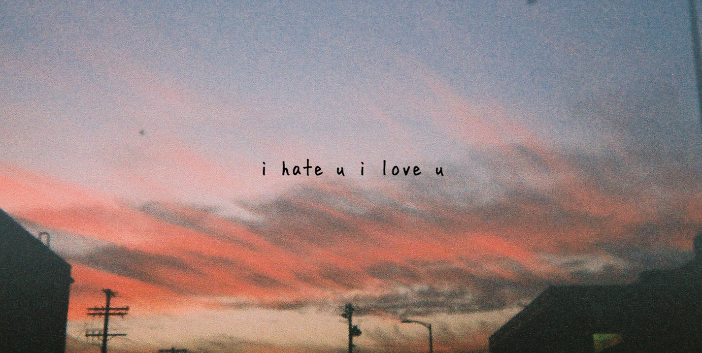 Hate I Love I Sing You You Who