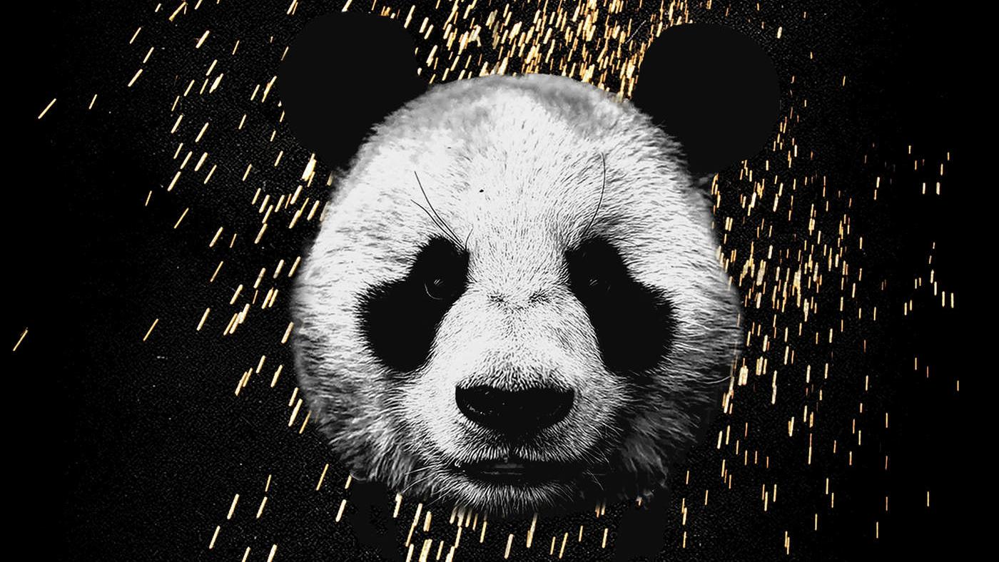 Desiigner panda stream lyrics jj music monday for New design pic
