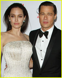 Did Angelina Jolie's Political Aspirations Lead to Her Divorce?
