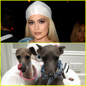 Kylie Jenner Reveals Why She Skipped AMAs 2016