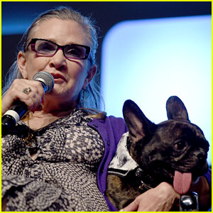 Carrie Fisher's Dog 'Tweets' Heartbreaking Message After Her Death
