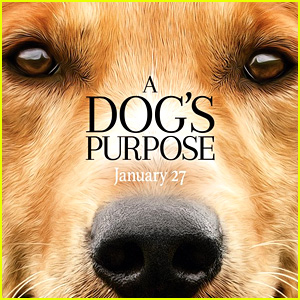 'A Dog's Purpose' Producer