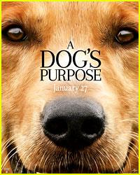 Dog S Purpose Unedited Video
