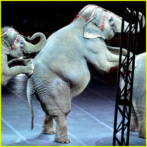 Ringling Bros. Circus is Closing After 146 years