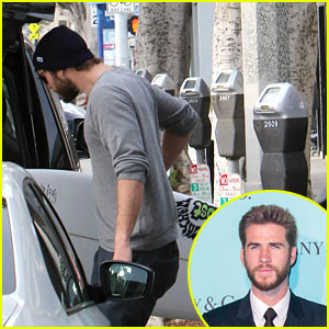 Liam Hemsworth Hits Surf Shop For Boards With Friends