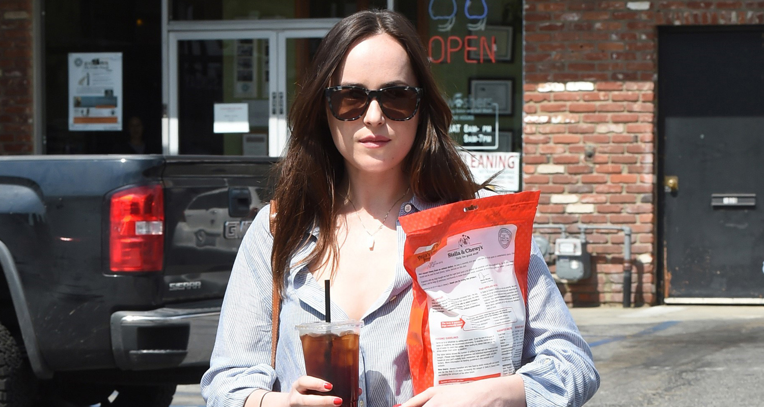 Dakota Johnson Stays Stylish While Running Errands in LA ...