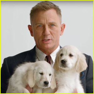 Daniel Craig Cuddles Up to Some Adorable Puppies For a Good Cause!