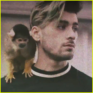 Zayn Malik Hosts Huge House Party in 'Still Got Time' Music Video - Watch Now!