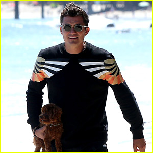 Orlando Bloom Almost Loses His Cute Puppy at the Beach