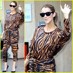 Celine Dion Steps Out in Tiger Stripes in Paris