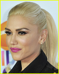 Gwen Stefani Sued By Fan Over Stampede at Concert