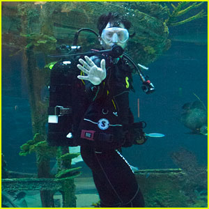 Mark Wahlberg Takes a Dive at Opening of Wonders of Wildlife Museum & Aquarium Opening!