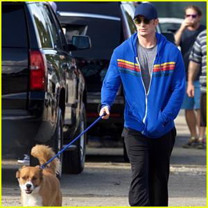 Chris Evans' Dog Dodger Joins Him on 'Avengers 4' Set!