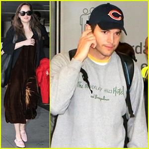 Dakota Johnson, Ashton Kutcher, & More Stars Land in Rio!