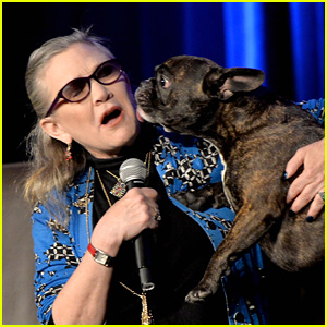 Carrie Fisher's Beloved Dog Gary Watched 'Star Wars: The Last Jedi' Trailer