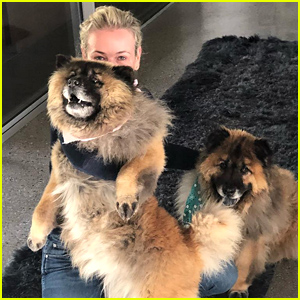 Chelsea Handler Rescues Two Dogs After the Death of Her Beloved Pet Chunk