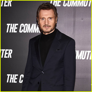 Liam Neeson Shares Thoughts on 'Witch Hunt' Happening in Hollywood