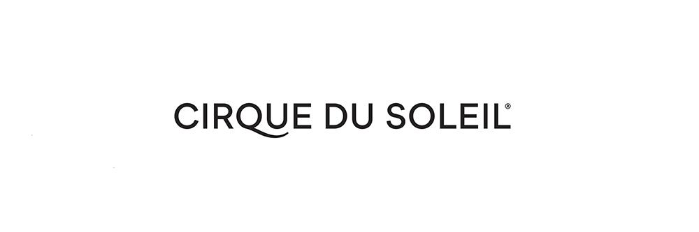 Cirque du Soleil Aerialist Yann Arnaud Dies After Falling ...