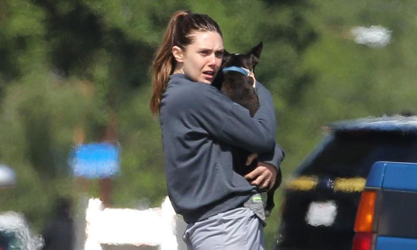 Elizabeth Olsen Saves A Puppy While Filming New Tv Series