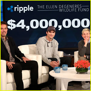 Ashton Kutcher Announces Enormous Donation to Ellen DeGeneres' Wildlife Fund
