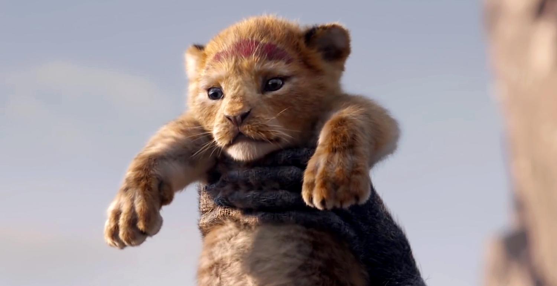 disney u2019s  u2018the lion king u2019 live