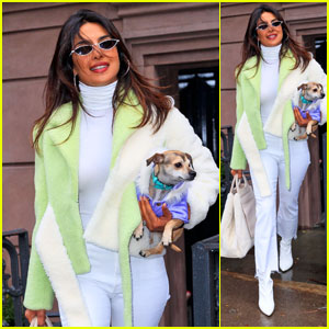 Priyanka Chopra Steps Out in NYC After Marrying Nick Jonas in India!