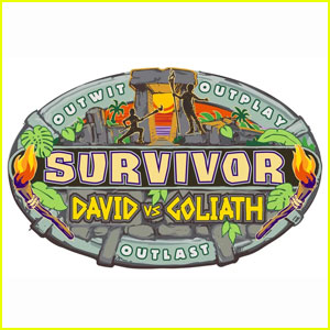 Who Won 'Survivor' Fall 2018? David vs. Goliath Winner Revealed!