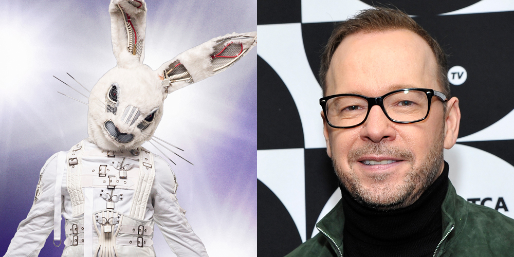 Is Donnie Wahlberg the Rabbit on 'Masked Singer'? He Was Asked About the Rumors!