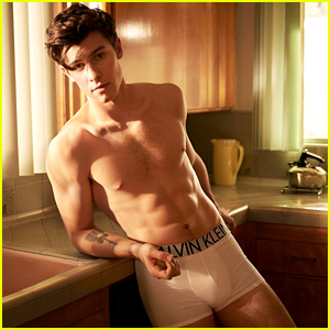 Shawn Mendes' Underwear Campaign for Calvin Klein is So Hot!