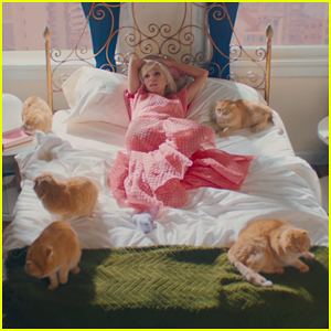 Carly Rae Jepsen Is Cat Obsessed in 'Now That I Found You' Music Video - Watch Here!