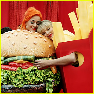 Taylor Swift & Katy Perry Hug in 'You Need to Calm Down' Video - See All Celeb Cameos!