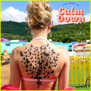 Taylor Swift Announces So Many Celebrity Cameos for 'You Need to Calm Down' Video!