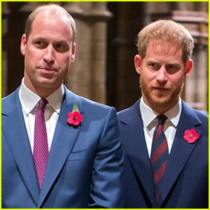 Prince William Is 'Worried' About Prince Harry Amid Documentary Interview