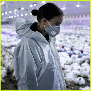 Rooney Mara Goes Undercover to Expose Animal Cruelty at Factory Farms