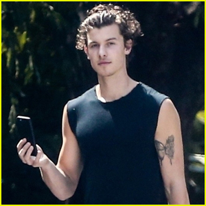Shawn Mendes Shows Off Bicep Tattoo While Out in Miami